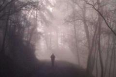 Fabiano-Rosa-viandanti-nella-nebbia