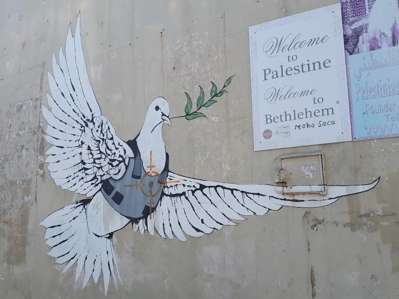 muro-colomba
